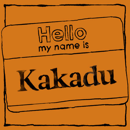 Where the name Kakadu Creative Comes From